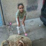 Aid orphelin Maroc