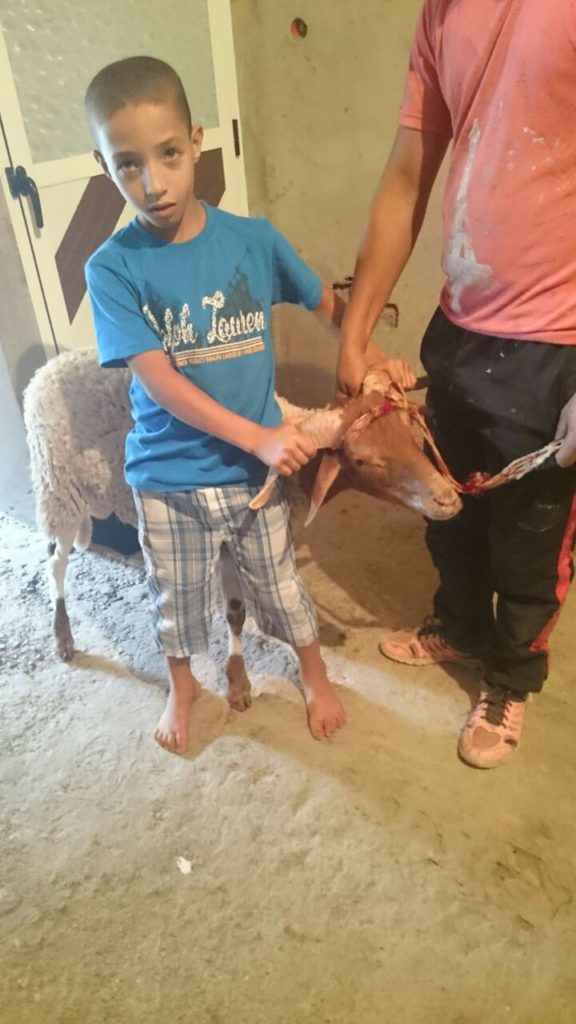 Enfants orphelins maroc